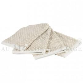 Lot de 4 gants de toilette BRISTOL Beige 450gr coton